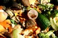 Hoe composteer ik afval