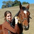 Hoe verzorg ik een paard