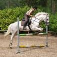 Hoe vind ik de perfecte paardrij-outfit