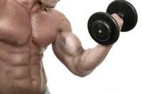 Hoe bouw ik snel spiermassa op